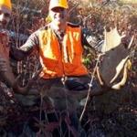 chasse orignal pourvoirie rudy laurentides quebec