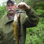 Pêche au doré au Rudy