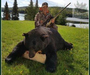 Chasse à l'ours noir au Rudy avec Norman Byrns
