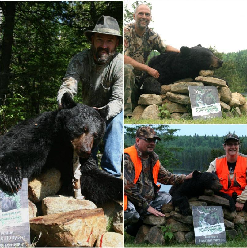 Chasse à l'ours noir au Rudy dans les Laurentides