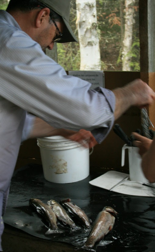 pêche truite pourvoirie rudy
