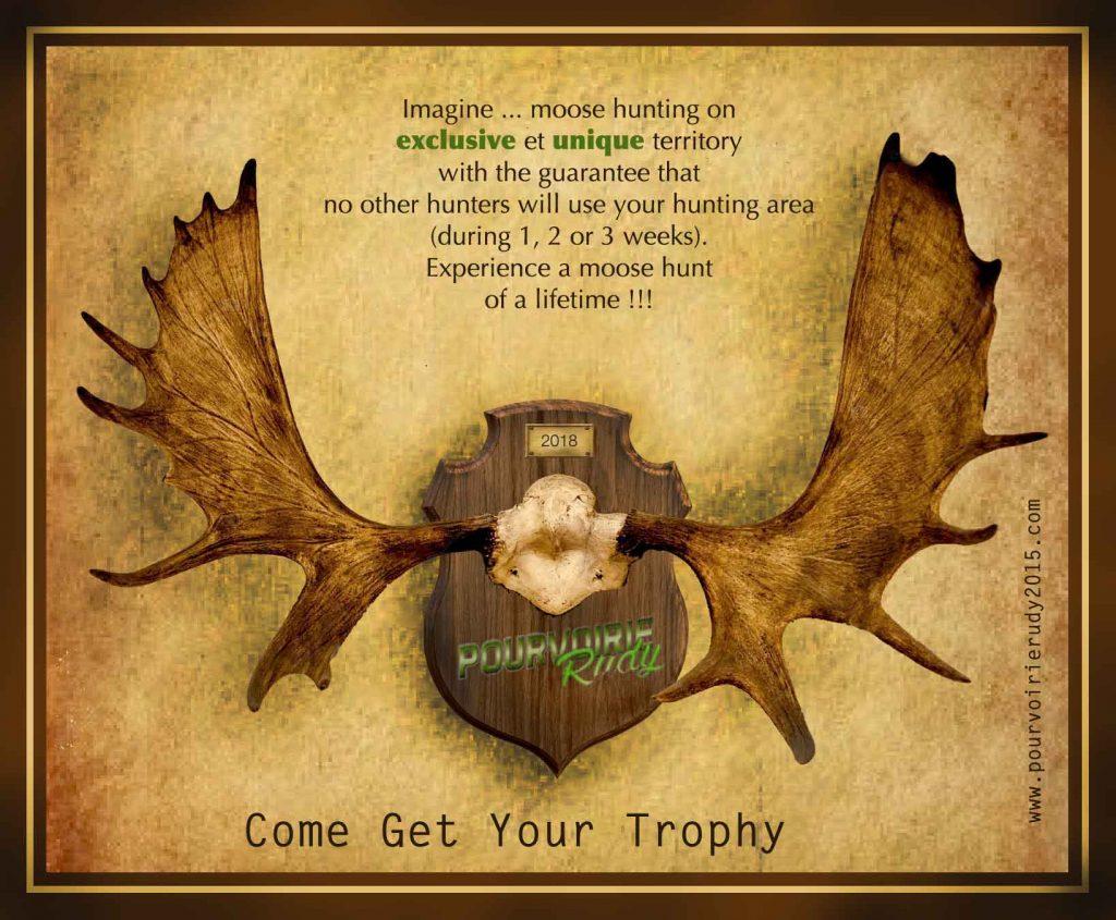 moose hunting in the laurentians