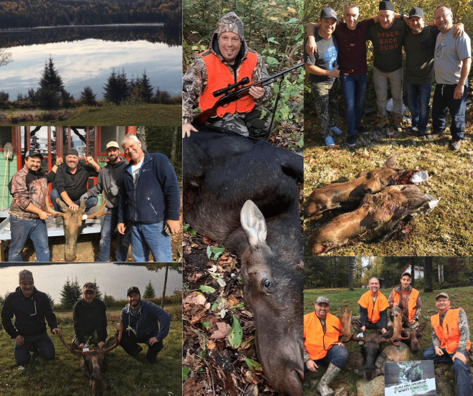 moose hunting at Rudy Outfitter in the Upper Laurentians in Province of Quebec